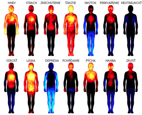 14 typov emócii: Takto sa prejavujú v ľudskom tele
