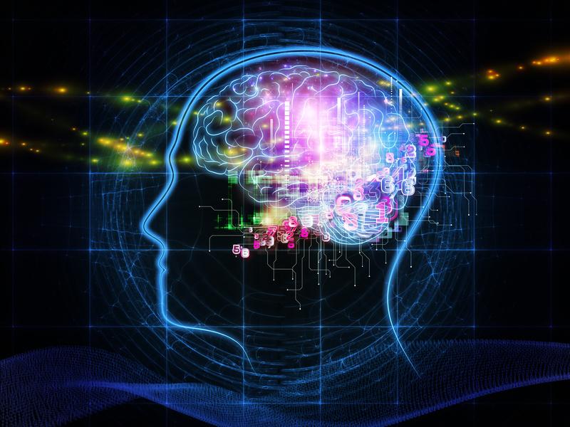 Záhady ľudského tela: erotické videá vs. mozog