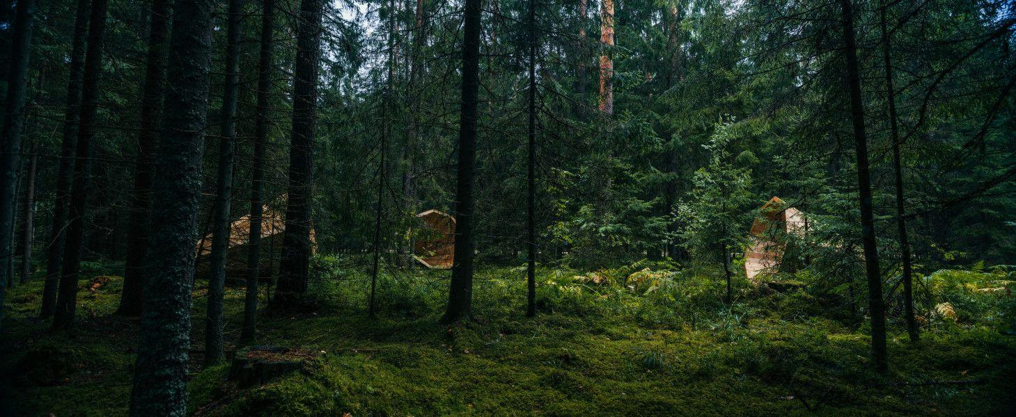 Extra veľké megafóny hlboko v lese vylepšujú zvuky prírody