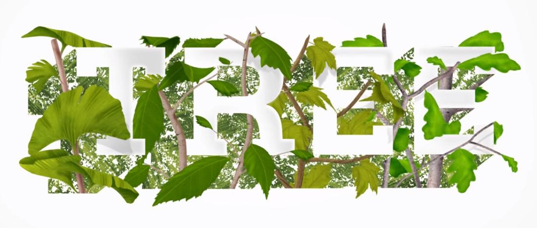 Revolučné bio urny:  Z popola blízkeho nový život formou stromu!