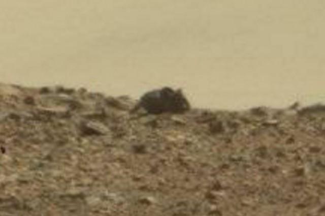 Život na Marse?! Tento tvor bol zachytený na záberoch z vesmíru