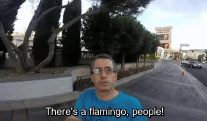 Chcel si natočiť celý výlet v Las Vegas na GoPro, zabudol však, že kameru mal celý čas natočenú na seba :D