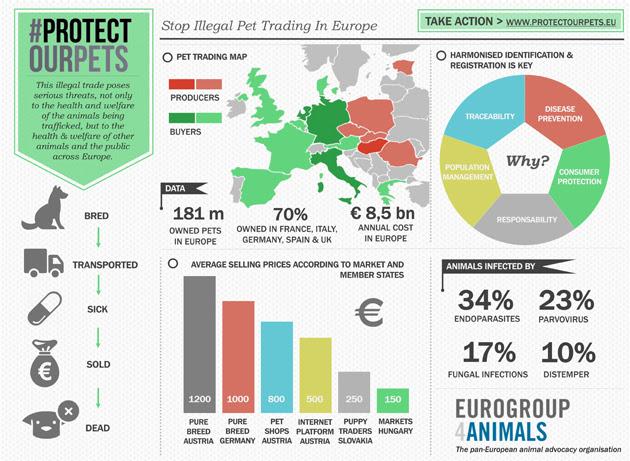 Pridajte sa k európskej online petícii Protect our Pets!