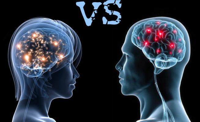Na koľko percent majú muži a ženy podobný mozog? Výsledok je skutočne prekvapivý