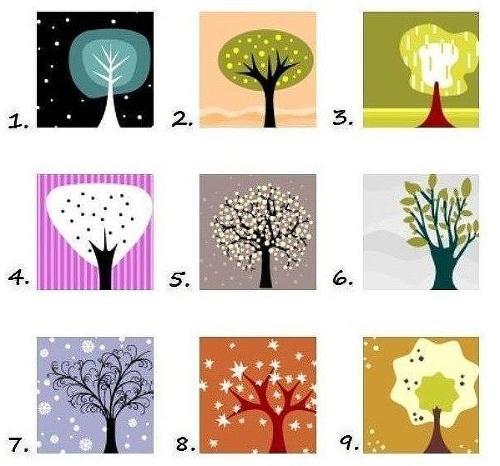 Podľa týchto stromov môžete zistiť, aký ste typ človeka!