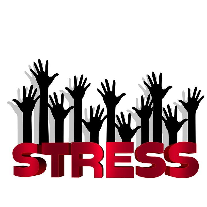 Ste v strese? Máte pred sebou cestu k skvelej pamäti a bystrému rozumu!