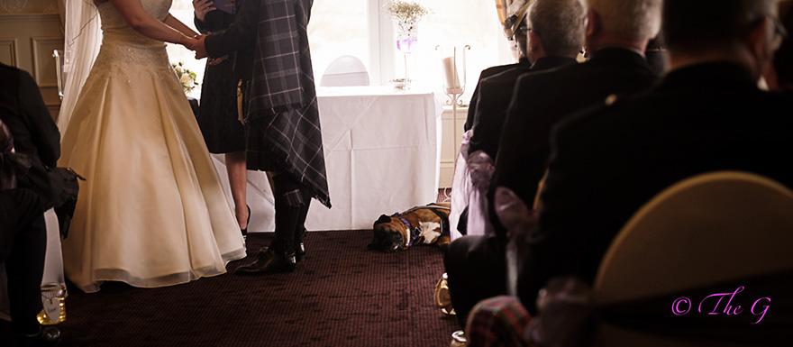 9-year-old-wedding-photographer-regina-wyllie-35