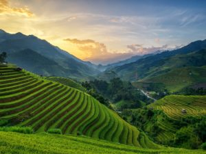 mu-cang-chai-vietnam-cr-getty