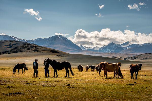 Altaj, Mongolsko, protisvetlo, podhlad