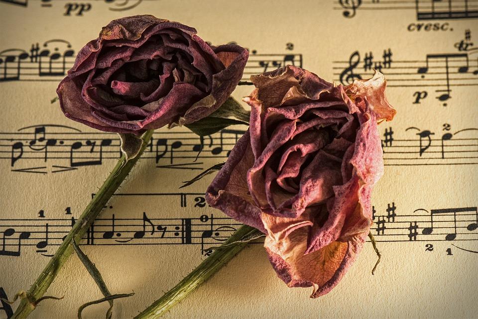 Blog: Keď v piesni ide o text