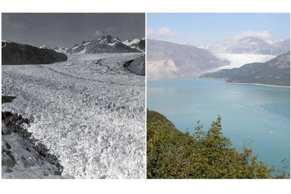 NASA odhalila zábery, ako vyzerala zem predtým a teraz. K takýmto dramatickým zmenám došlo