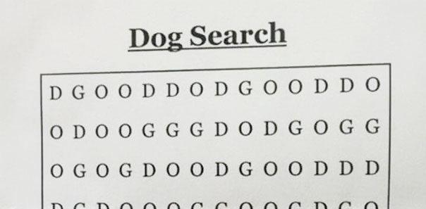 Najťažšia osemsmerovka všetkých čias?! Dokážeš nájsť slovo DOG?