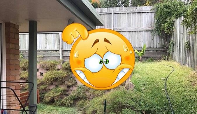 V záhrade sa ukryl nebezpečný tvor! Skús nájsť živočícha, ktorý môže zapríčiniť smrť