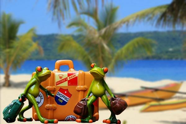 Aby dovolenka nedopadla zle: Na čo musíte myslieť ešte pred vycestovaním?