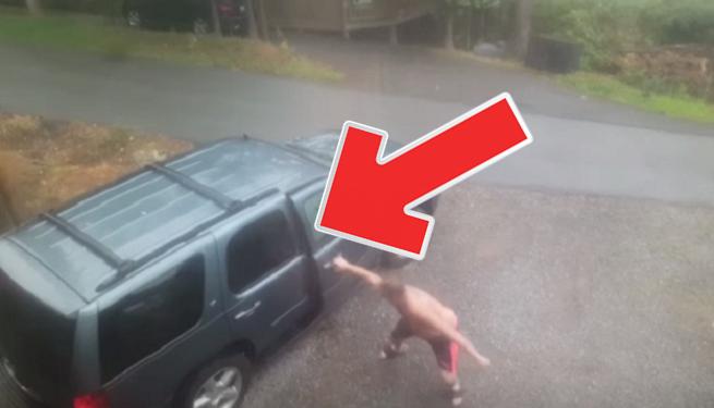 Video, z ktorého naložíte do gatí: Nebezpečný tvor, ktorý vybehne z auta, ťa nenechá pokojným