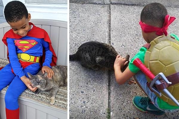 Mačky sa môžu pochváliť vlastným superhrdinom. Je ním 5-ročný chlapec, ktorý sa prezlieka za Supermana, Batmana či Spidermana