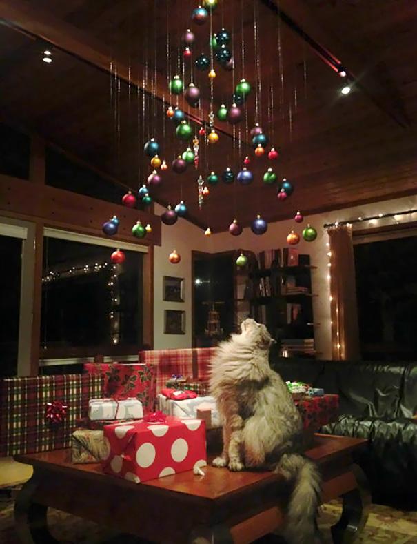 Blížia sa Vianoce a ty stále nevieš, ako ochrániš svoj stromček pred bláznivým domácim zvieraťom? Inšpiruj sa ľuďmi, ktorí sa vynašli ako páni