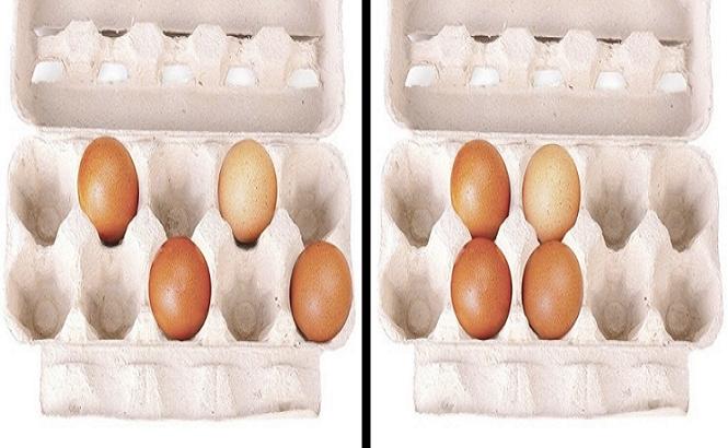 Vajíčka o tebe prezradia viac než si myslíš: Vyber si jeden z kartónov a zisti veľa o svojich silných i slabých stránkach