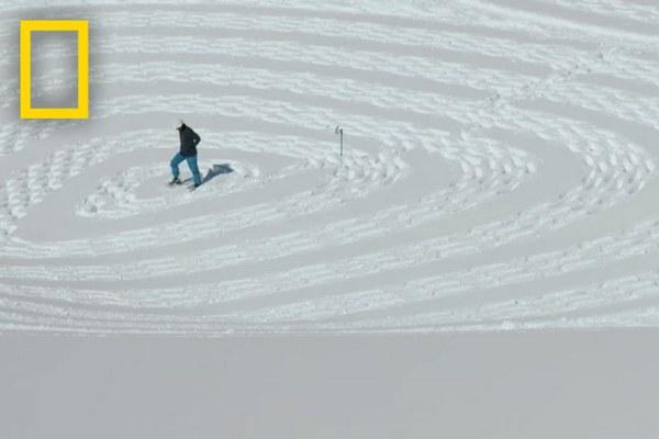 Muž vytvára nádherné obrazy v snehu. Z jeho výtvorov vám padne sánka!