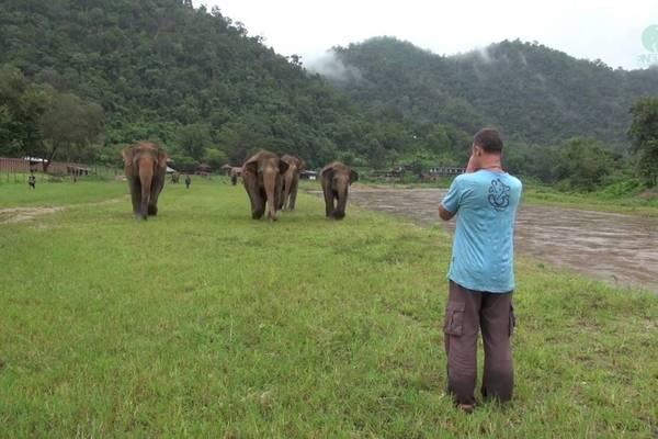 Video: Počuli ste už smiať sa slona? Takto vtipne znie ich smiech!