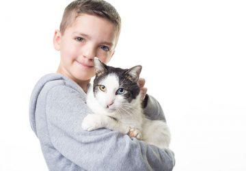 Chlapček s rôznofarebnými očami a rázštepom pery bol roky šikanovaný. Všetko sa zmenilo, keď sa v jeho živote objavila mačka s rovnakým postihnutím