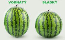 Neviete, ako si vybrať šťavnatý a sladký melón? Pomôžu vám tieto tipy