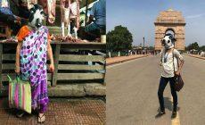 Ženy v Indii, ale i vo svete začali nosiť masky kráv. Chcú nimi upozorniť na vážny problém