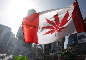 Kanada legalizuje rekreačné užívanie marihuany