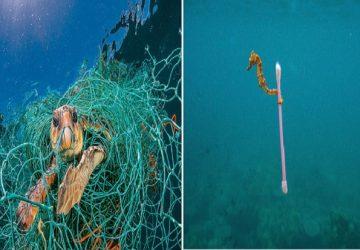 Topíme sa v plastoch! National Geographic ukazuje, ako veľmi je naša planéta postihnutá odpadom