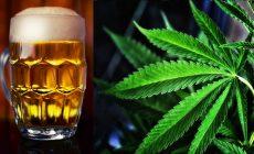 Marihuanové pivo s rýchlym účinkom? Vyrábajú ho v Kanade