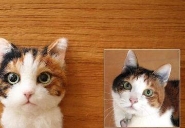 Žena vytvára z vlny mačky, ktoré sú od živých na nerozoznanie! Pri pohľade na jej výtvory padá sánka