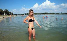 Slováci natrafili pri kúpaní na nevídané tvory! TOTO sa vyskytuje v našich vodách