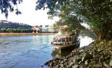 Dráma v Bratislave: Na Dunaji havarovala výletná loď. Na jej palube bolo 153 ľudí