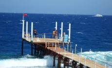 Mrazivé detaily zo smrteľného útoku žraloka v Egypte. Spomienky na krvavú tragédiu nedajú svedkom nehody spávať
