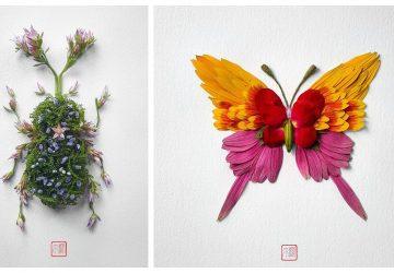 Keď sa rozhodnete vytvoriť hmyz iba z kvetov a lístia, môže to dopadnúť aj takto krásne!