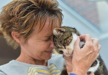 Táto mačka sa stratila ešte v roku 2005. Po dlhých trinástich rokoch našla cestu domov a takto dojemne sa zvítala so svojou majiteľkou