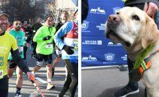 Slepý muž ako prvý v histórii zabehol polmaratón v New Yorku. Pomohli mu traja štvornohí miláčikovia