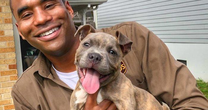 Spríjemňuje si čas v práci: pozrite si skvelé fotografie UPS šoféra so psíkmi, ktorých denne stretáva